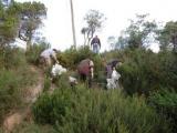 El 12 de maig els Caçadors de Cassà convoquen una recollida de deixalles oberta a tothom