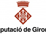 La subvenció del Fons de Cooperació de la Diputació de Girona permet finançar 169.747,55 € de l'enllumenat de Cassà